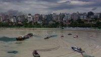 Peligroso invasor: así el mar se tornó marrón y causó un problema casi incontrolable