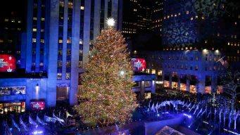 Se enciende el árbol más famoso del mundo con unas 50,000 luces