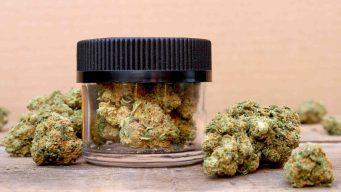 Cierran dispensario ilegal de cannabis al sur de California